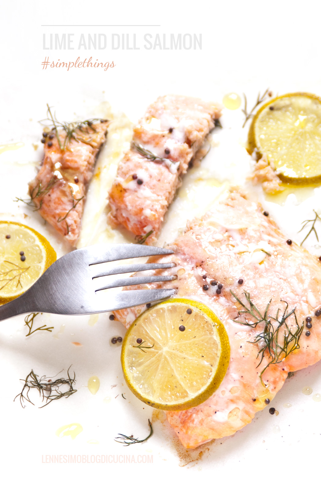 salmone-lime-aneto-2