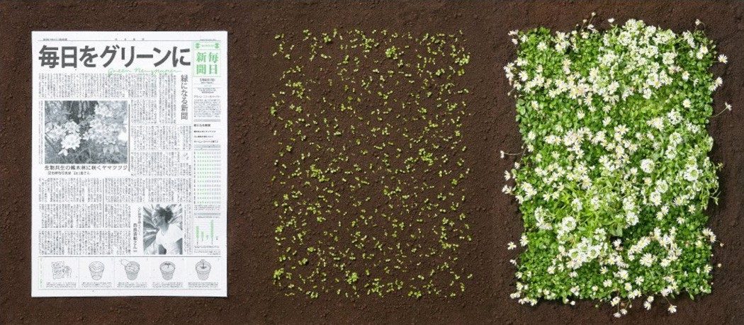 Green Newspaper: il giornale che fiorisce