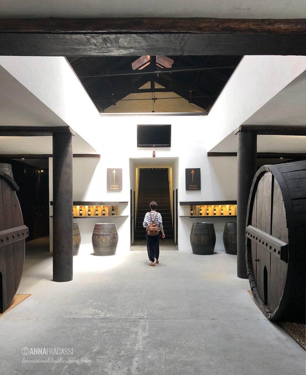 Porto: il vino di Porto. Storia, caratteristiche, abbinamenti