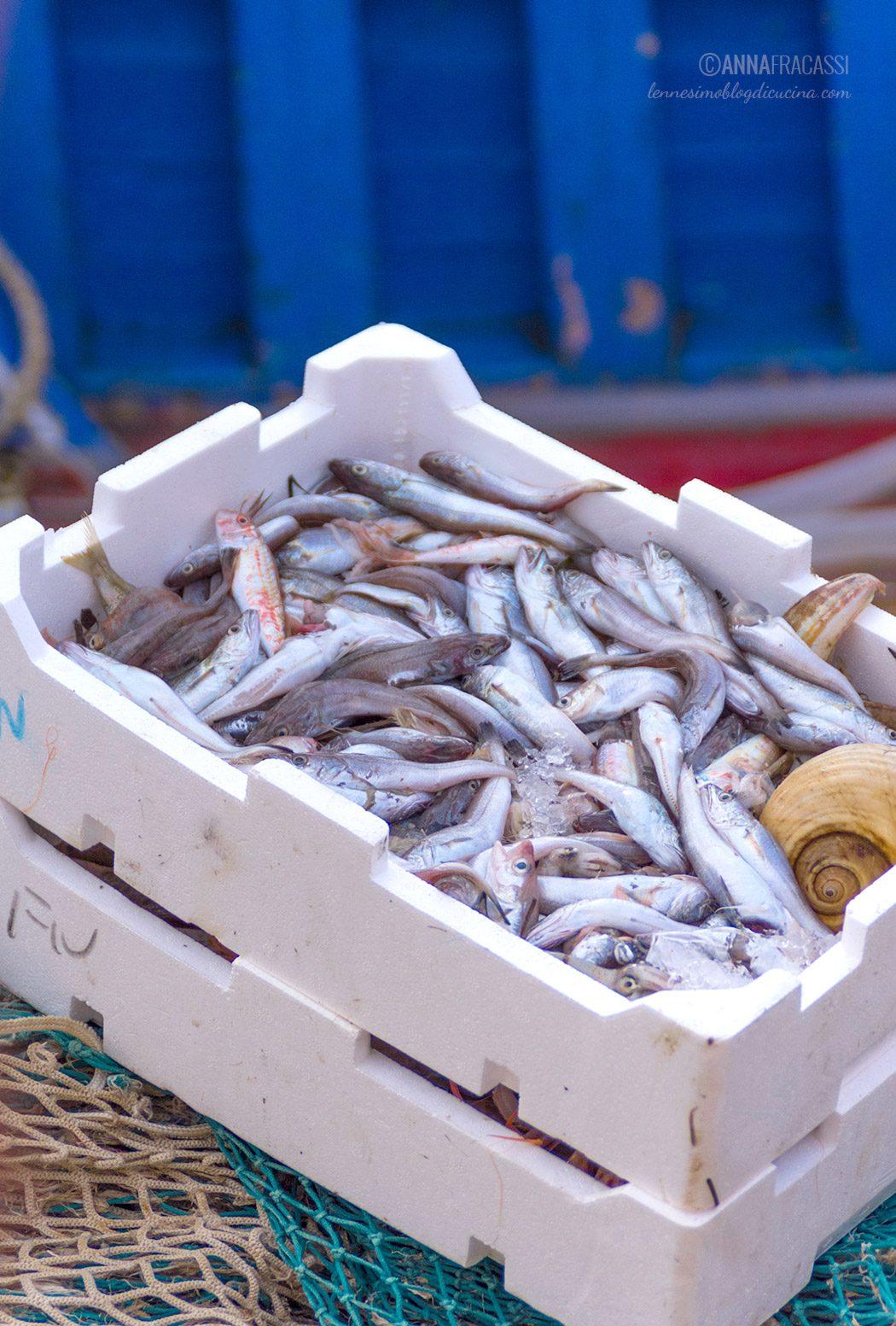 Pesce di stagione: quale scegliere?